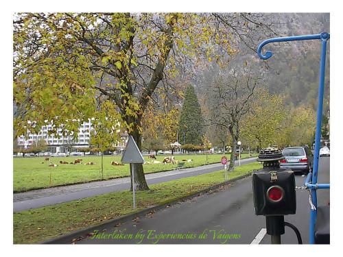 experiencias-de-viagens-Interlaken-passeio