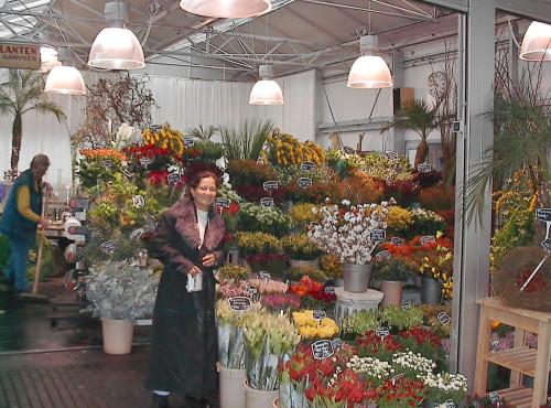 experiencias-de-viagens-amsterdam-floricultura