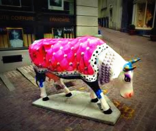 experiencias-de-viagens-zurich-cow