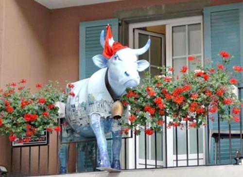 experiencias-de-viagens-zurich-street art-cow