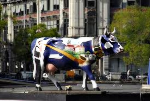 experiencias-de-viagens-zurich-switerland-cow
