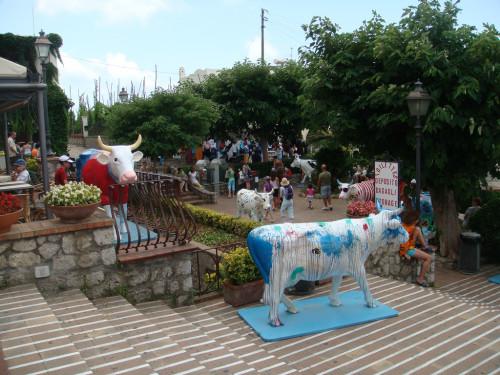 experiencias-de-viagens-capri-vacas