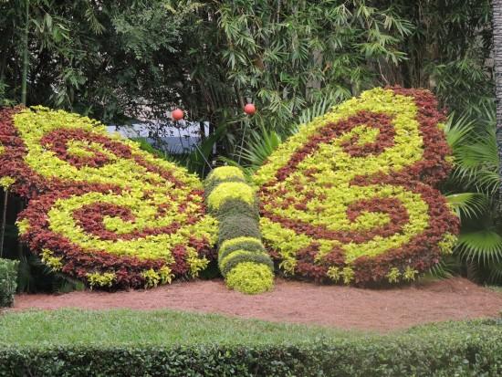 experiencias-de-viagens-busch-garden