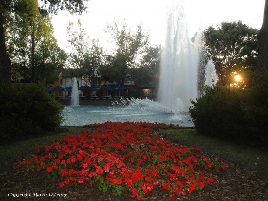 experiencias-de-viagens-kings-dominion-at-night