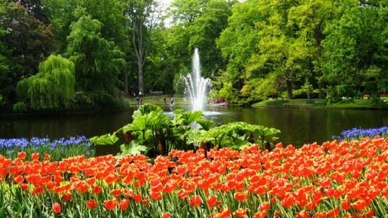 experiencias-de-viagens-amsterdam-keukenhof-parque-flores