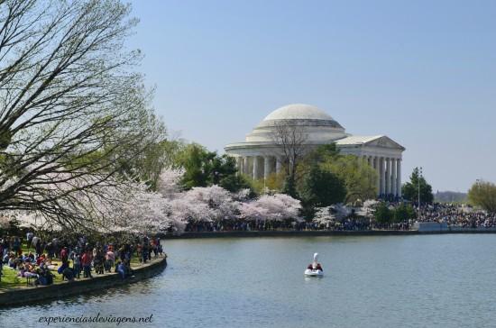 experiencias-de-viagens-cerejeiras-festival