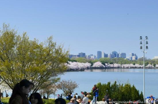 experiencias-de-viagens-cerejeiras-lago