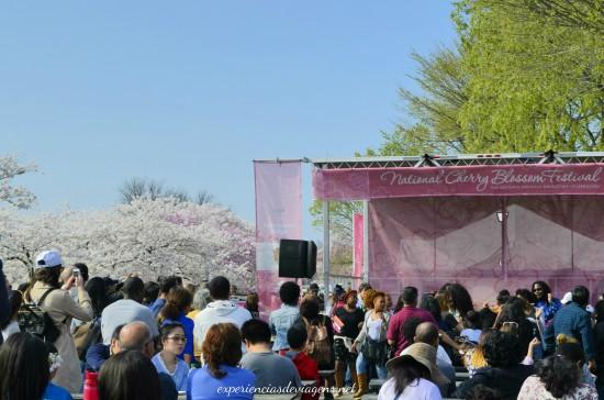 experiencias-de-viagens-cerejeiras-national-festival