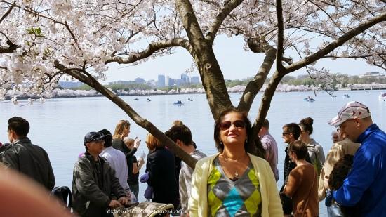 experiencias-de-viagens-cerejeiras-visao