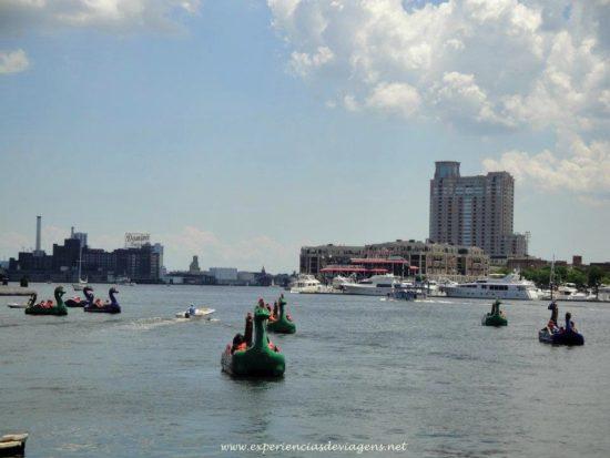 experiencias-de-viagens-baltimore-inner-harbor-pedalinhos