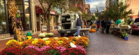 experiencias-de-viagens-cumberland-business-flores
