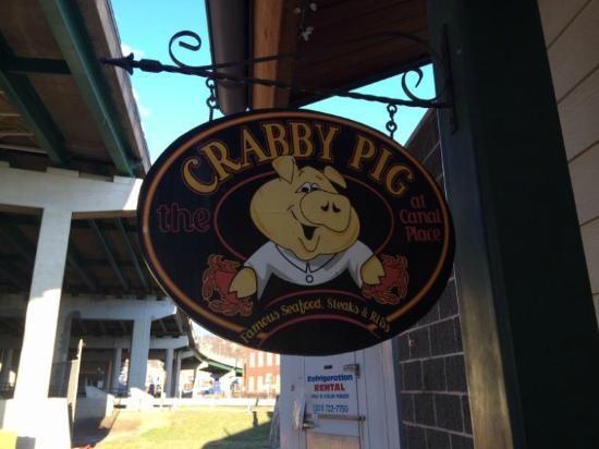 experiencias-de-viagens-cumberland-crabby-pig