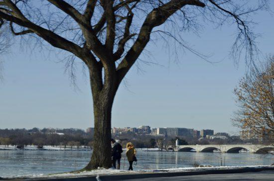 experiencias-de-viagens-dc-winter-bridge