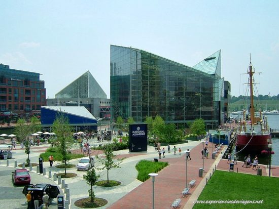 experiencias-de-viagens-baltimore-aquarium
