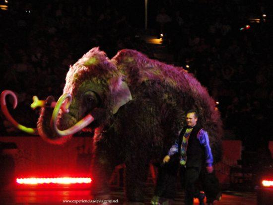 experiencias-de-viagens-baltimore-circo-elefante