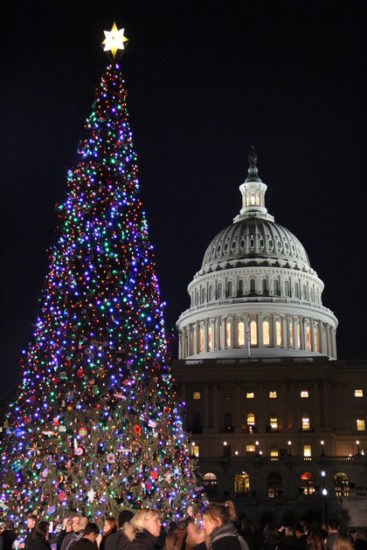 experiencias-de-viagens-washington-national-christmas-tree