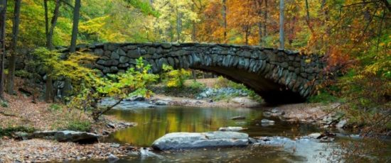 experiencias-de-viagens-washington-rock-creek-park-bridge