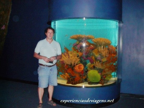 experiencias-de-viagens-gatlinburg-aquarium-algas
