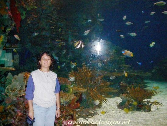 experiencias-de-viagens-gatlinburg-aquarium-ripley