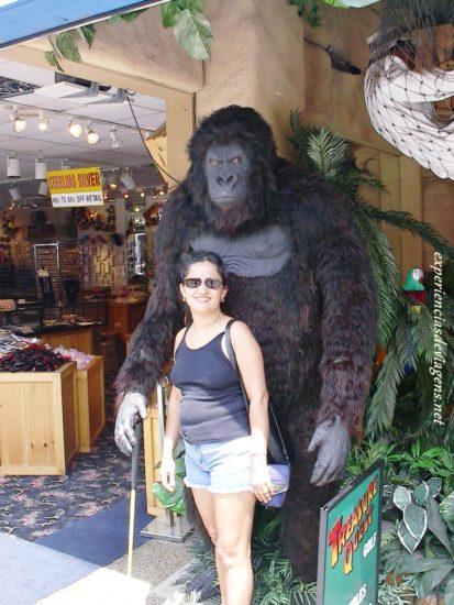 experiencias-de-viagens-gatlinburg-store
