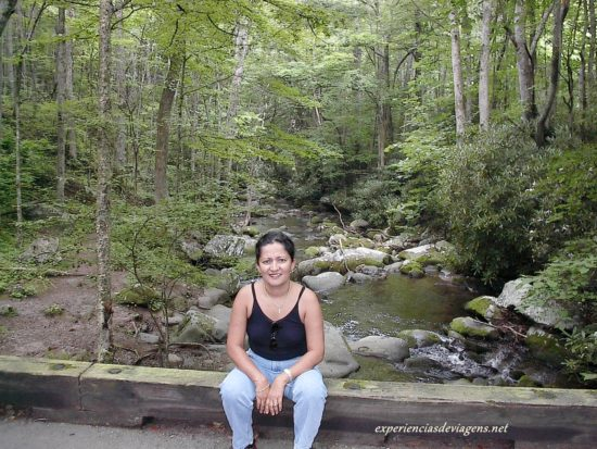 experiencias-de-viagens-gatlinburg-trails