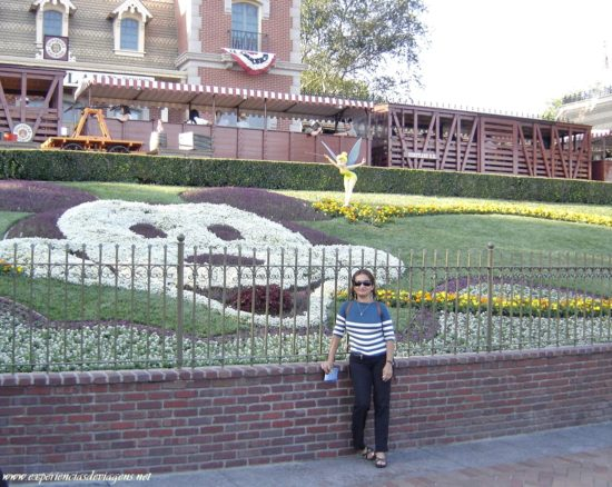 experiencias-de-viagens-california-disney-rail