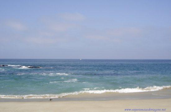 experiencias-de-viagens-laguna-beach-pacific-ocean