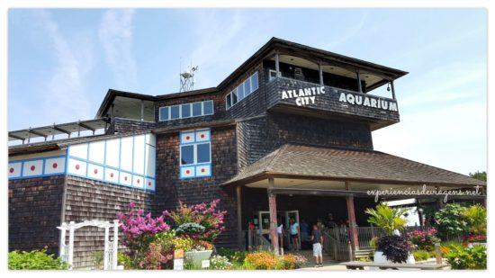 experiencias-de-viagens-atlantic-city-aquarium